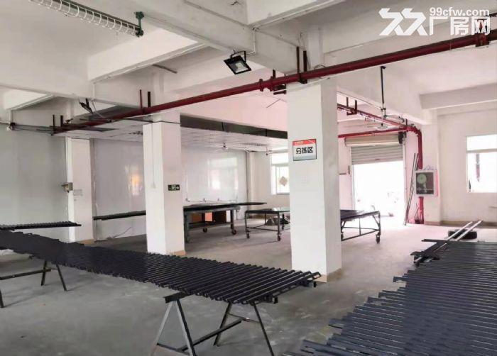 广州海珠新出一楼500平仓库出租,带消防喷淋-图(3)