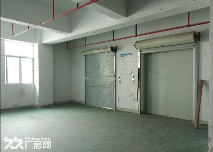 广州番禺一整层5600平米厂房仓库带货台出租,可分租-图(3)
