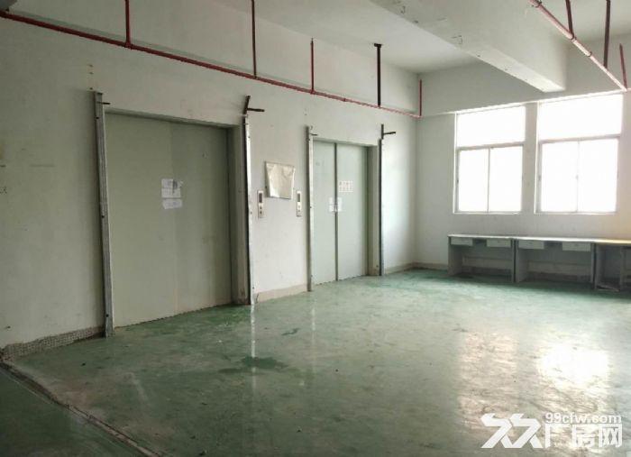 广州番禺一整层5600平米厂房仓库带货台出租,可分租-图(2)