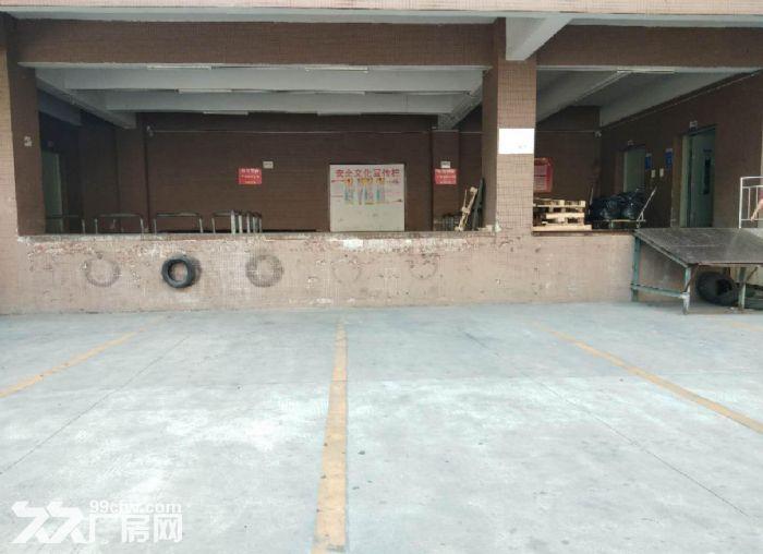 广州番禺一整层5600平米厂房仓库带货台出租,可分租-图(1)