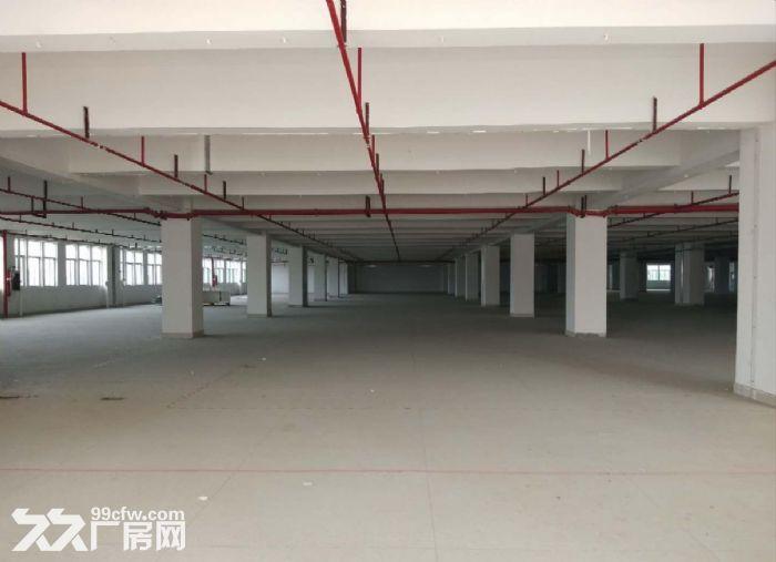 广州番禺一整层5600平米厂房仓库带货台出租,可分租-图(5)