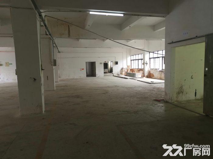清溪渔梁围工业园独院两层厂房出租3600平现成水电装修-图(3)
