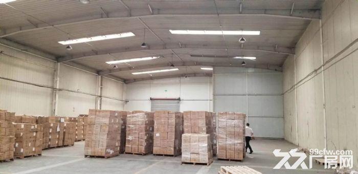 层高8米纯一层钢结构厂房先到先得-图(4)