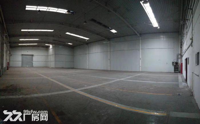 层高8米纯一层钢结构厂房先到先得-图(5)