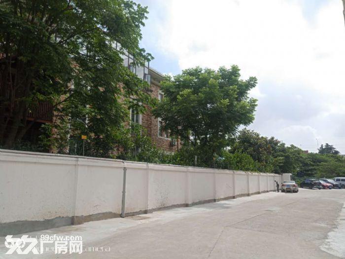 (出租)租金1.7元起!金桥自贸区中环旁独栋3000平米可分割!-图(5)