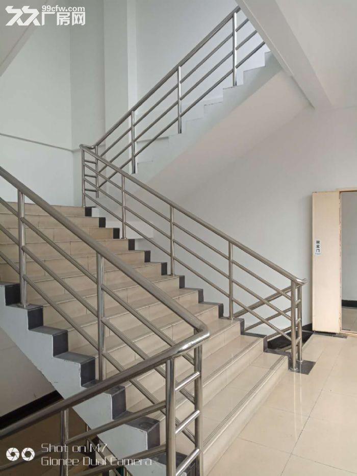(出租)业主直租金桥环评包过300平起租研发办公电商贸易!整层800平-图(7)