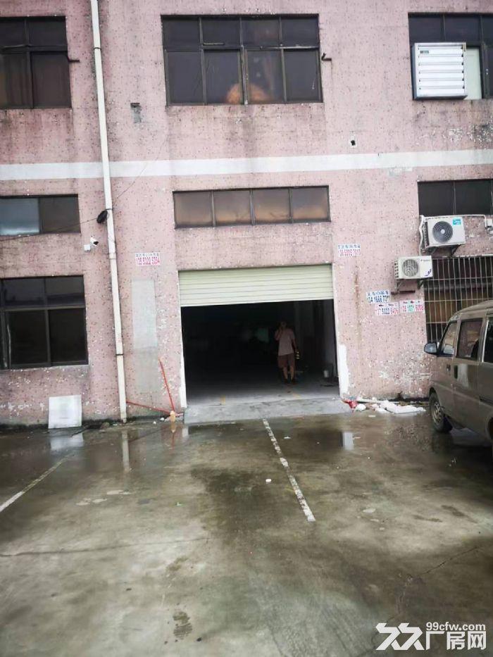 清溪谢坑一楼小面积厂房出租340平带宿舍现成装修办公室-图(2)