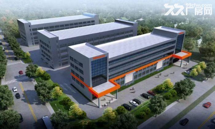 新建框架式厂房10000平方米招租-图(1)