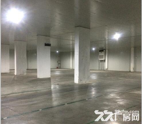 佛山南庄恒温仓库出租-图(3)