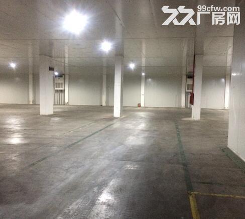 佛山南庄恒温仓库出租-图(4)