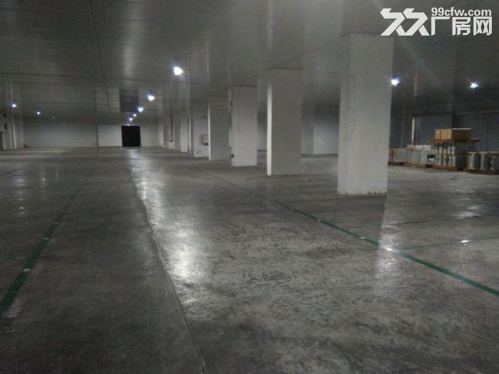 佛山南庄恒温仓库出租-图(6)