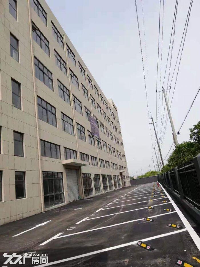 九亭标准厂房办公楼出租-图(5)