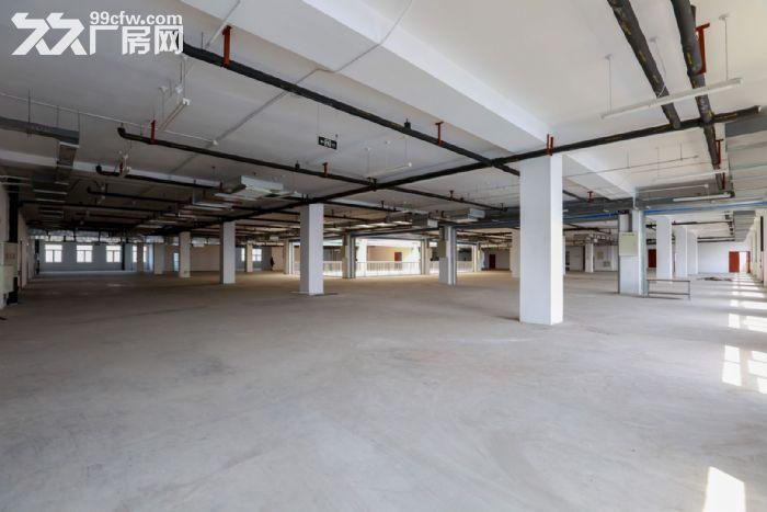 自贸区独栋优质办公仓库展厅出租出售-图(1)