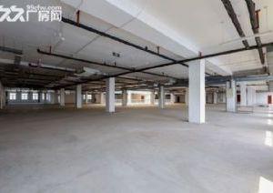 自贸区独栋优质办公仓库展厅出租出售