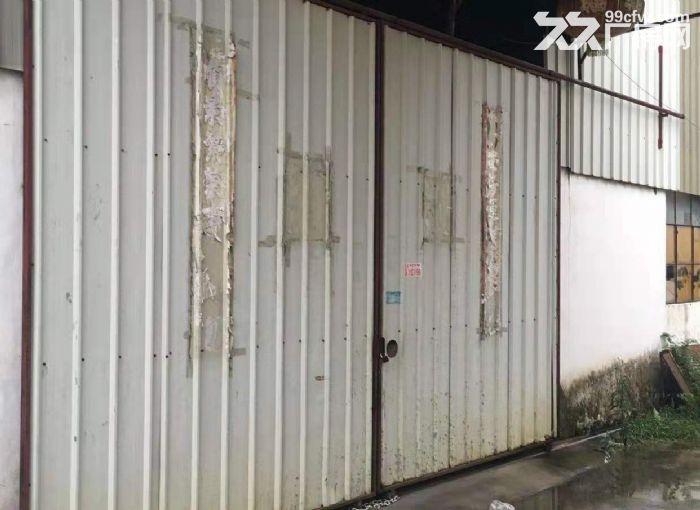 江海区礼东工业区单一层厂房800方出租价格实在电100-图(3)