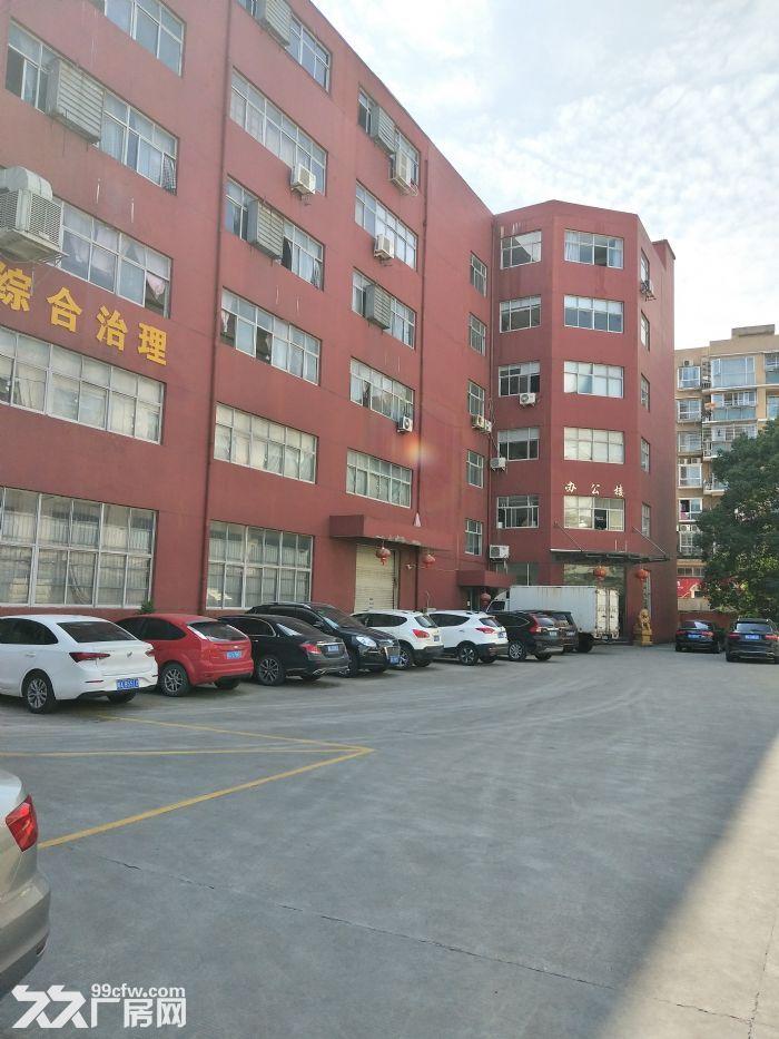 瓯海经济开发区1楼300平方,可用-图(3)