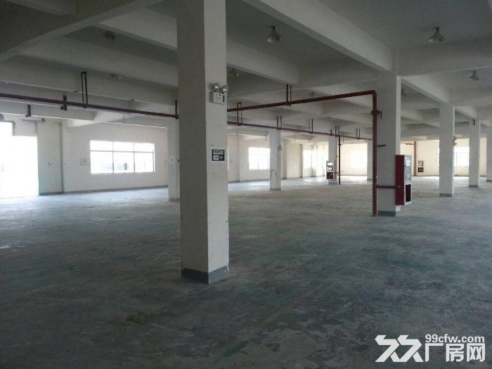 新出!)苏州吴中区迎春南路边一楼3200平米标准厂房出租-图(2)