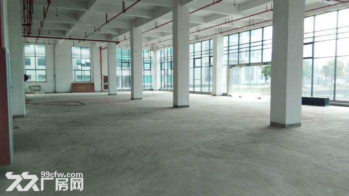 一楼1200方层高5米,落地窗,适合摄影研发科技等-图(1)