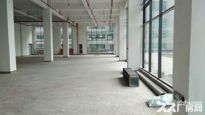 一楼1200方层高5米,落地窗,适合摄影研发科技等-图(2)