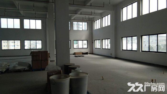 一楼1200方层高5米,落地窗,适合摄影研发科技等-图(3)