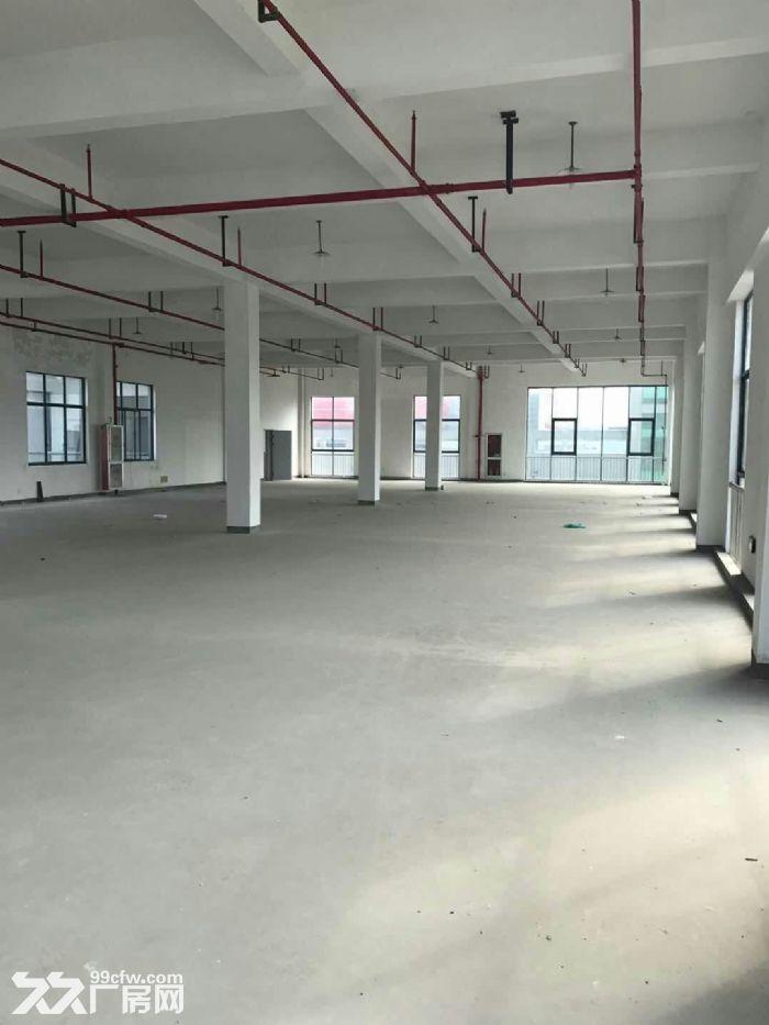 一楼1200方层高5米,落地窗,适合摄影研发科技等-图(6)