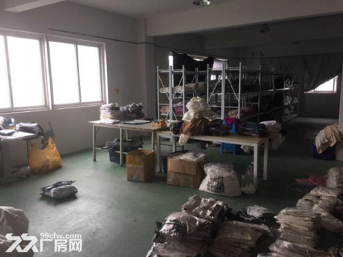 滨文路400方厂房,采光佳,淘宝电商,储仓加办公看过来。-图(6)