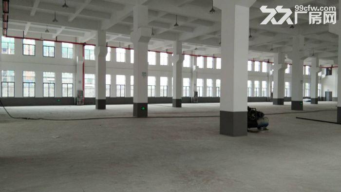 南环路4200方厂房5吨货梯四面采光,摄影基地影棚研发可分割-图(2)