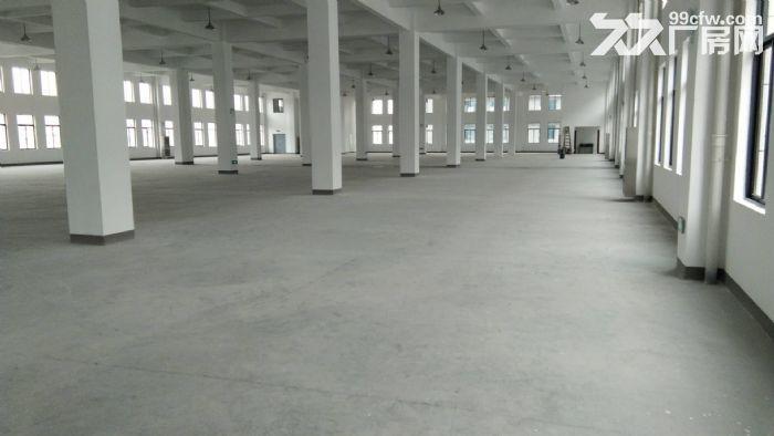 南环路4200方厂房5吨货梯四面采光,摄影基地影棚研发可分割-图(1)