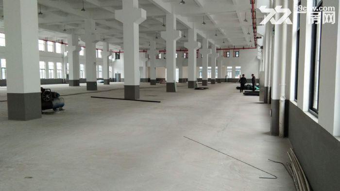 南环路4200方厂房5吨货梯四面采光,摄影基地影棚研发可分割-图(3)
