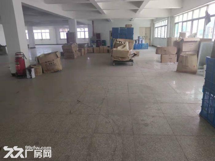 鲤城区黄龙大桥附近5000平厂房交通便利-图(1)