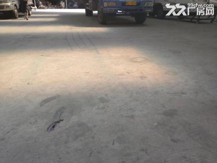 鲤城区黄龙大桥附近5000平厂房交通便利-图(2)