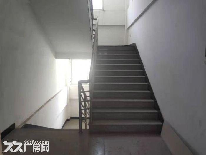 鲤城区黄龙大桥附近5000平厂房交通便利-图(3)