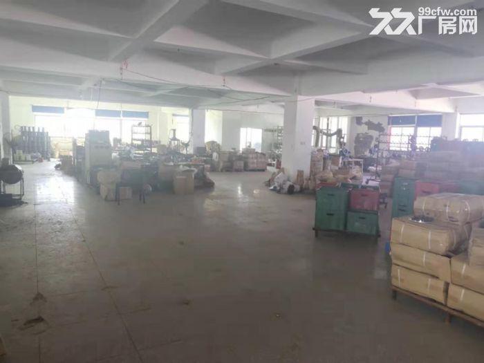 鲤城区黄龙大桥附近5000平厂房交通便利-图(5)