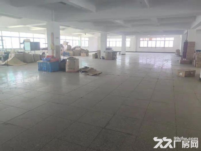 鲤城区黄龙大桥附近5000平厂房交通便利-图(6)