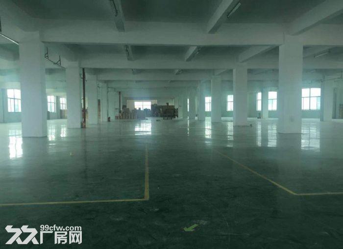 广州白云区厂房1500方大小可分租形象好带装修-图(3)