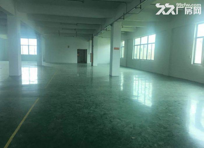 广州白云区厂房1500方大小可分租形象好带装修-图(4)