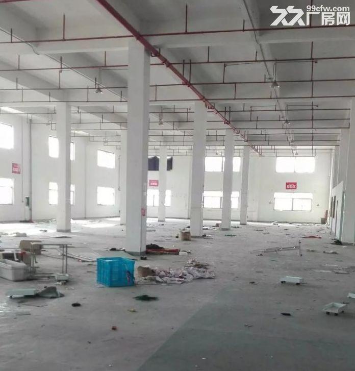现有500一楼厂房出租,层高6米,可做隔层,可随时看房-图(1)