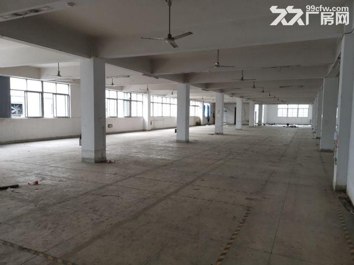瓯海高翔工业区厂房出租2000可分租-图(1)