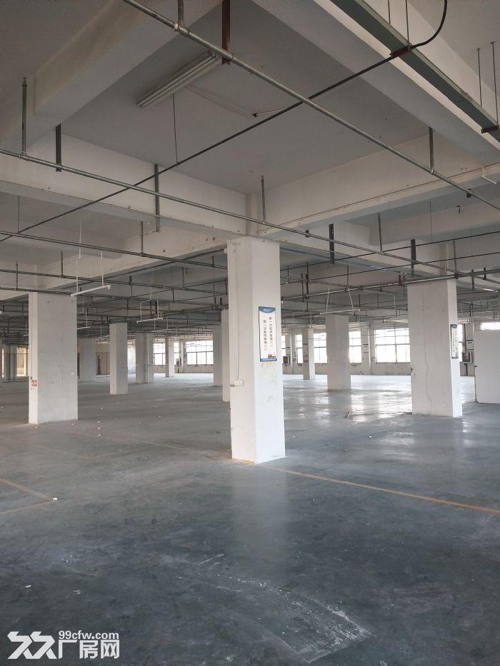 高翔标准厂房2楼1700平方,适合仓库-图(1)