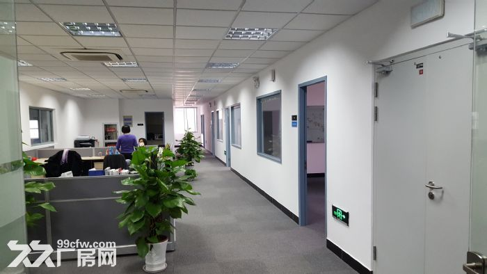 (新出!)吴江单层机械厂房4200、6000、12000平米厂房出租同津大道-图(2)