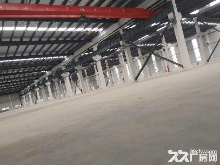 (新出!)吴江单层机械厂房4200、6000、12000平米厂房出租同津大道-图(3)