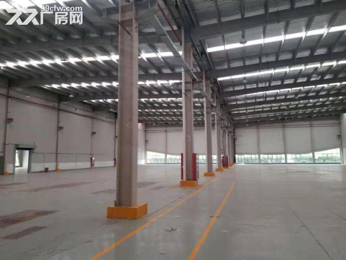(新出!)吴江单层机械厂房4200、6000、12000平米厂房出租同津大道-图(5)