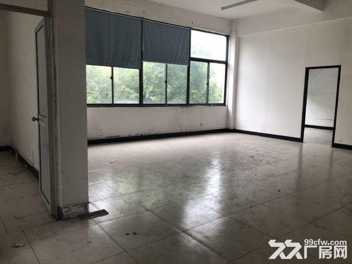 青浦香花桥崧泽大道力惠工业园区厂房原房东-图(6)