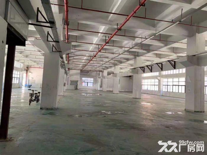 凤岗竹塘标准一楼带牛角高6.5米带装修厂房出租2600平-图(1)