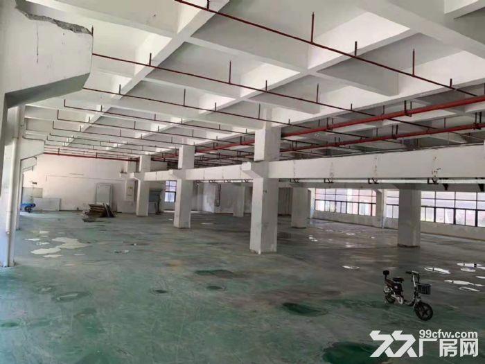 凤岗竹塘标准一楼带牛角高6.5米带装修厂房出租2600平-图(2)