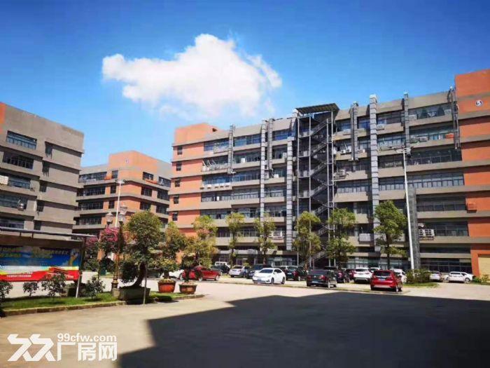 凤岗竹塘标准一楼带牛角高6.5米带装修厂房出租2600平-图(4)