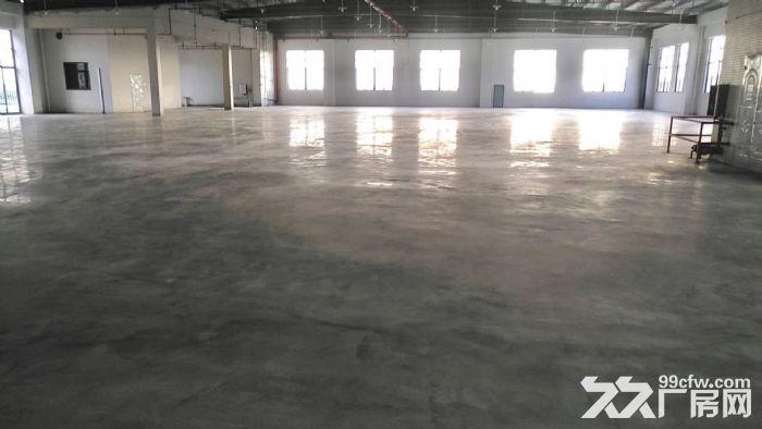 佛山南海丙二类消防专业带管理仓库出租-图(1)