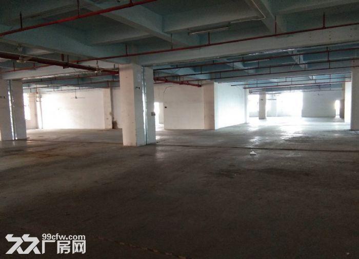 广州白云区1500方标准厂房出租带装修办公室-图(1)