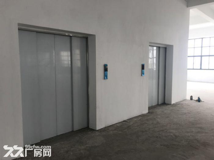独立停车场,大面积厂房一栋招租-图(1)