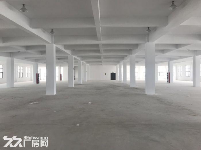 独立停车场,大面积厂房一栋招租-图(6)